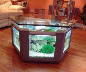 aquarium-bentuk-meja-kaca-bagus