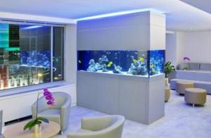 contoh-aquarium-modern-terbaru-paling-cantik