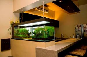 desain-aquarium-modern-dalam-rumah