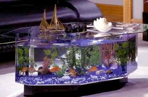 model-aquarium-untuk-hiasan-rumah